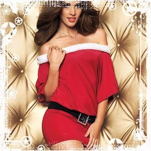 Fredericks of Hollywood  Santa Costume Dress L